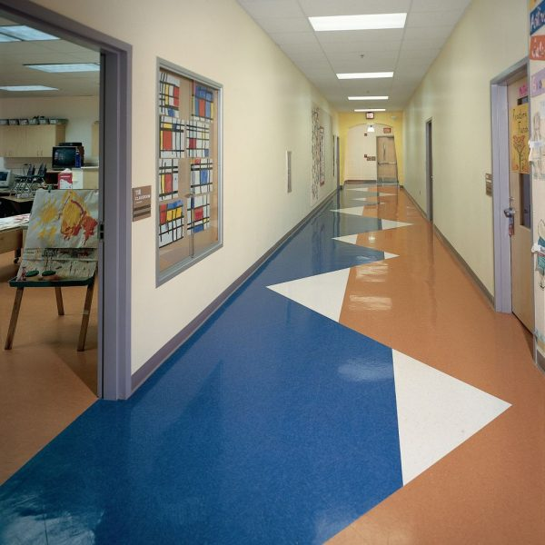 LVT- blue and orange -image